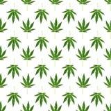 Hemp or cannabis leaves seamless pattern stock photography