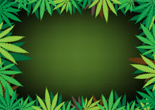 Hemp dark background. The green hemp, cannabis leaf dark framework background Royalty Free Stock Photos
