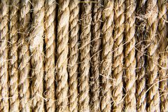 Hemp fiber twisted and coiled rope Royalty Free Stock Image