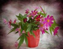 Hemp and flowers Stock Image