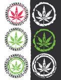 Hemp hemp leaf silhouette design stamps illustration Stock Photos