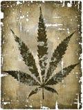 Hemp leaf. On grunge background - illustration vector illustration