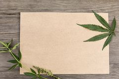 Hemp leaves and flowers with craft blank paper on old grunge wooden background. Top view. Minimalistic mockup. royalty free stock image