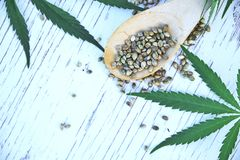 Hemp leaves on wooden background, seeds, cannabis oil extracts in jars Royalty Free Stock Photos
