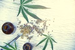 Hemp leaves on wooden background, seeds, cannabis oil extracts in jars Stock Image