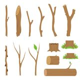 Hemp, logs, branches and sticks of forest trees. Vector illustration. Hemp, logs, branches and sticks of forest trees. Vector cartoon illustration Stock Image
