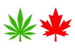 Hemp and maple leaf vector icon. S set vector illustration