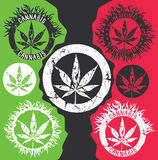 Hemp marijuana leaf silhouette stamps illustration Royalty Free Stock Image