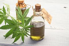 Hemp oil in small bottles royalty free stock images