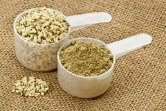 Hemp protein powder and seeds Royalty Free Stock Photography