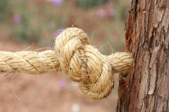 Hemp rope Royalty Free Stock Image