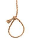 Hemp rope isolated on a white background Stock Image