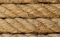 Hemp rope texture Stock Image