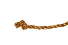 Hemp rope on a white background Royalty Free Stock Photography