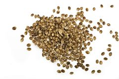 Hemp seed. Isolated hemp seed on whiter background stock photo