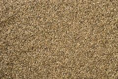 Hemp seed background Royalty Free Stock Photography