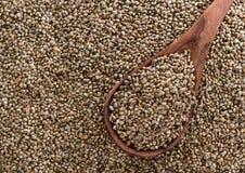 Hemp Seed background Stock Photos