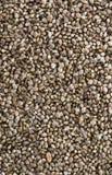 Hemp Seed background Stock Photography