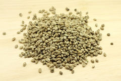 Hemp seed for birds feed  texture Stock Photography