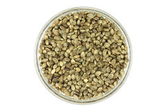 Hemp seed in a glass cup Royalty Free Stock Photography