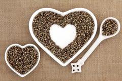 Hemp Seed Stock Image