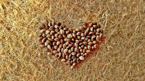 Hemp Seed Heart. These Raw Hemp Seeds were formed into a heart, upon a Hemp Fiber Material Royalty Free Stock Images