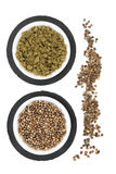 Hemp Seed and Powder Stock Image