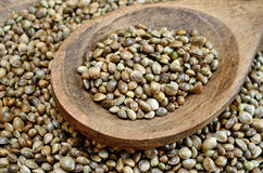 Hemp seed on table with spoon stock image