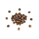 Hemp seeds. Stock Image