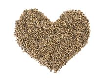 Hemp Seeds Stock Photo