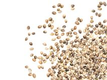 Hemp seeds from the corner. Close up of some hemp seeds that are spread out from the lower right corner and isolated on white background stock image