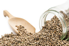 Hemp seeds in a glass jar Royalty Free Stock Images