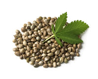 Hemp seeds with a green leaf Stock Image
