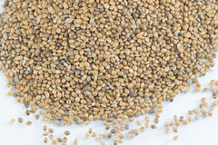 Hemp Seeds. Held by woman hands, shaping a heart Royalty Free Stock Photography