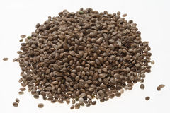 Hemp seeds or hemp nuts Stock Photo