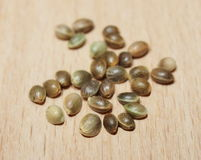 Hemp seeds isolation on wood background Royalty Free Stock Photos