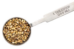 Hemp seeds on measuring spoon stock photo