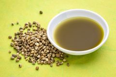 Hemp seeds and oil. Dry hemp seeds and oil in a small bowl against green mulberry paper stock image