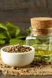 Hemp seeds and oil Royalty Free Stock Image