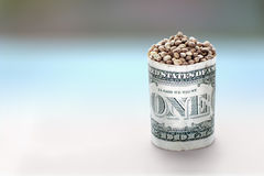 Hemp seeds in one dollar barrel Stock Photography