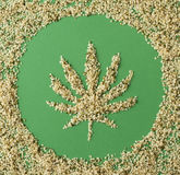 Hemp seeds. Shelled hemp seeds sprinkled in the shape of a leaf from the cannabis plant from which they are derived. Hemp seeds are considered to be a nutritious royalty free stock photos