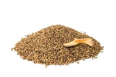 Hemp seeds with spoon. Pile of hemp seeds with a wooden spoon on white background royalty free stock photography