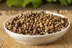 Hemp seeds. A white ceramic bowl full of hemp seeds, close up Royalty Free Stock Images