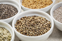 Hemp seeds Royalty Free Stock Images