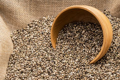 Hemp seeds with wooden bowl Stock Images
