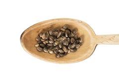 Hemp seeds on a wooden spoon Stock Photos