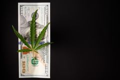 A hemp sheet on a 100 dollar bill, on a black background with an empty space for an inscription. A hemp sheet on a 100 dollar bill, on a black background with an stock images