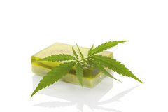 Hemp soap. Green hemp soap and hemp leaf on white background. Cannabis cosmetics. Ecological healthy skin care stock image