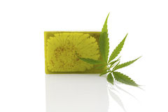 Hemp soap. Royalty Free Stock Photos