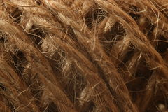 Hemp threads Royalty Free Stock Photo